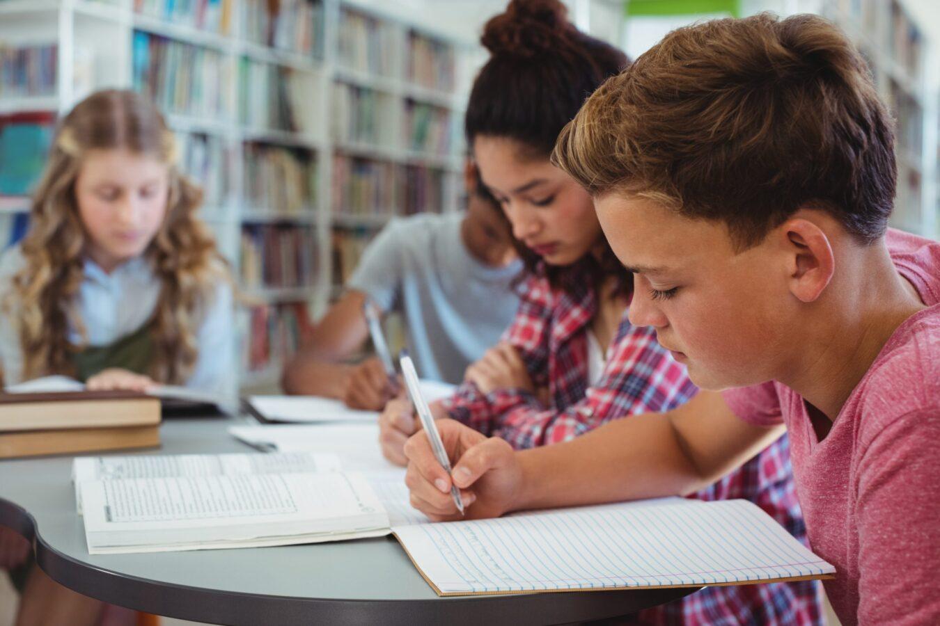 Pupils studying